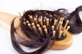 Berbagi Tips dan Trik Kesehatan: 5 Penyebab Rambut Rontok Pada Wanita