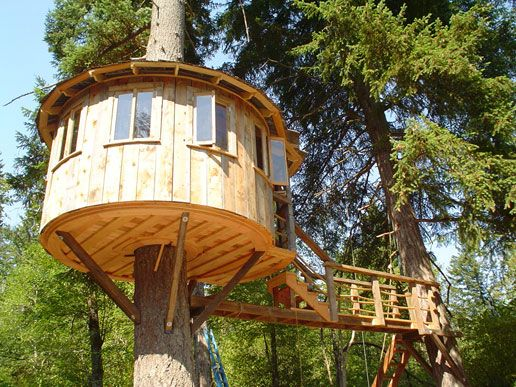 Pin by meri smiley on kids 39 dream backyard pinterest for How to build a treehouse roof