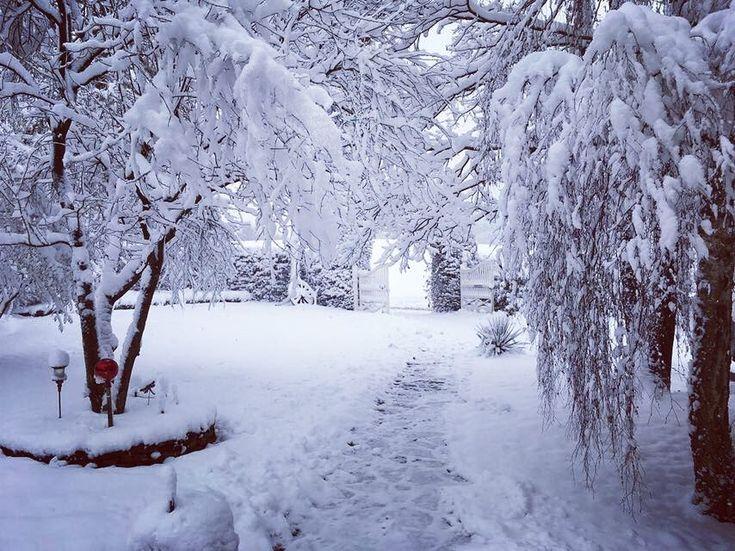 Endlich ist es weiß also ab auf die Pisten!  Zeit für Wintersportaktivitäten! einmalige-erlebnisse.de #schnee #pistengaudi #winter #weiß #ig_deutschland #stillen #ruhe #natur #ski #snowboard #schneeerlebnis