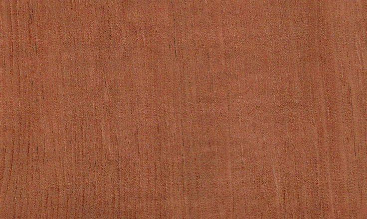55 best essence de bois images on pinterest woodwind for Essence de terebenthine bois