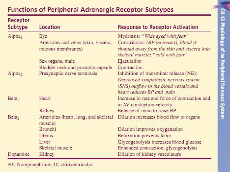 #Nursing School Pharmacology! Must know!  Adrenergic Receptor Subtypes Alpha1, Alpha2, Beta1, Beta2, Dopamine Lehne: Pharmacology for Nursing Care, 7th Edition
