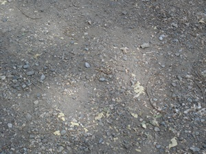 Smaller (~20mm radius) crushed gravel worn from use