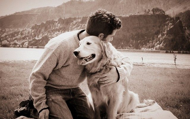 S'occuper d'un animal ne se limite pas à lui donner à manger et le soigner quand il le faut. Certains propriétaires oublient que le chien est un...