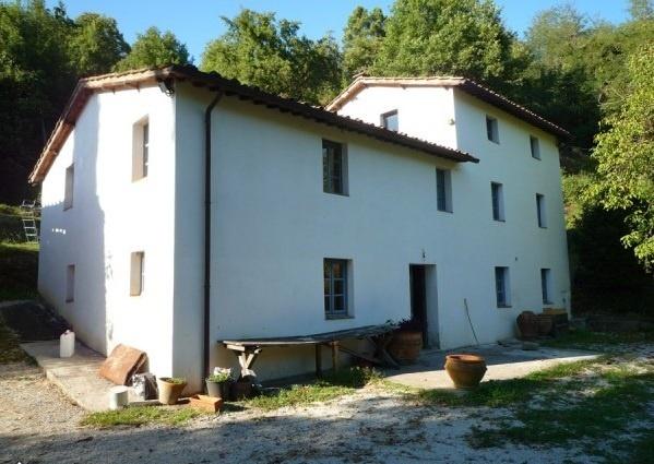 Rustic for sale on the hill of lucca  Rustico in vendita sulle colline di lucca