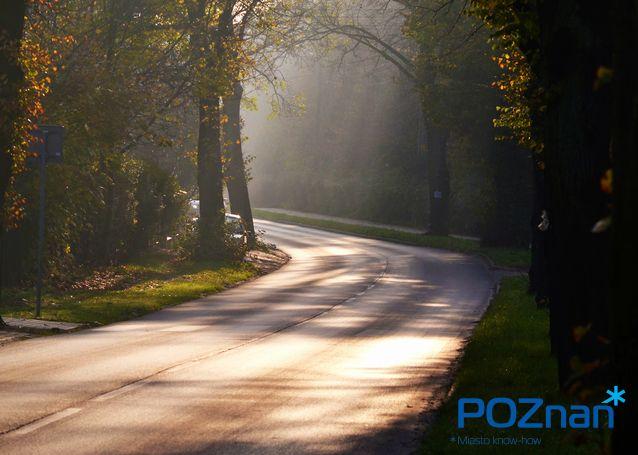 [fot. M. Kolasa] #Poznan