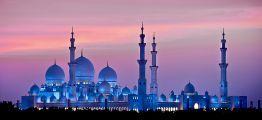 ОАЭ (Объединенные Арабские Эмираты) фото #24769