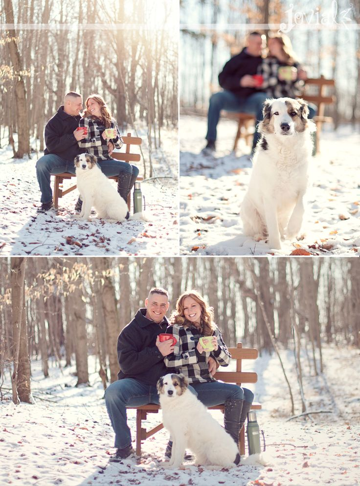 winter engagement photos with dogs