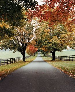 If you could plan your perfect fall getaway in Virginia, what destinations would you include? This article will have you daydreaming through Charlottesville and Middleburg with mentions of superb dining, award-winning wineries and luxury accommodations. #BucketList for sure. #loveva #fallinva