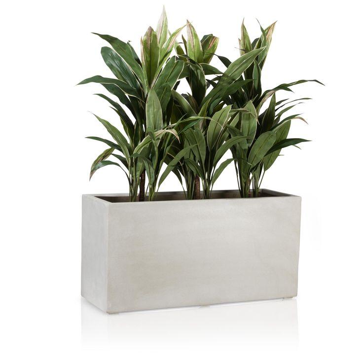 Der Fiberglas-Pflanztrog VISIO 40 in Beton-Optik hat eine etwas schlankere Silhouette als die meisten, gewöhnlichen Blumentröge und wirkt somit trotz seiner großzügigen Abmessungen nicht allzu wuchtig. Die in aufwändiger Handarbeit gefertigte, raue Oberfläche verleiht dem Pflanztrog das Erscheinungsbild eines Beton-Pflanzkübels. Dementsprechend passt sich der Blumentrog optimal an bereits begrünte Außenbereiche und Gärten an. In Innenräumen schafft er kleine, grüne Oasen.