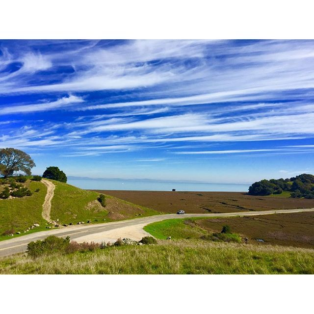 Caliparks : China Camp State Park