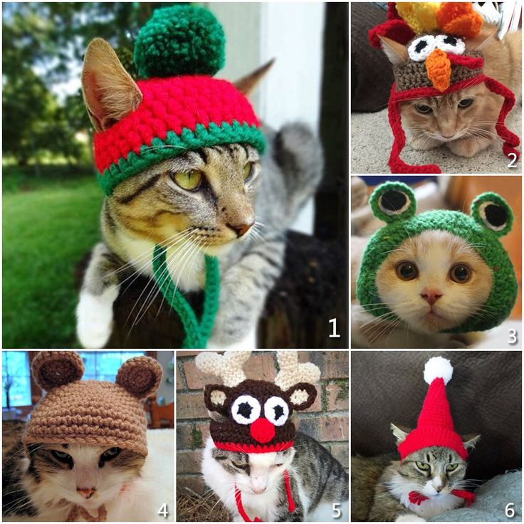Cat Costume Pet Turkey Hat Thanksgiving Apparel for Cats