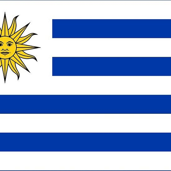 uraguay flag