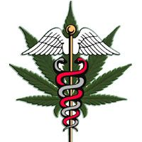 Home | The Hemp and Cannabis Foundation, THCF Medical Clinics, THC Foundation, Medical Marijuana Doctors, Medical Marijuana Clinics, Medical Marijuana Referrals, Medical Marijuana Permit, Medical Marijuana Card, Serving The Cannabis Community Since 1999, Arizona Medical Marijuana, Michigan Medical Marijuana, Oregon Medical Marijuana, Washington State Medical Marijuana, Hawaii Medical Marijuana, Colorado Medical Marijuana, California Medical Marijuana, Oregon Medical Marijuana Doctors…