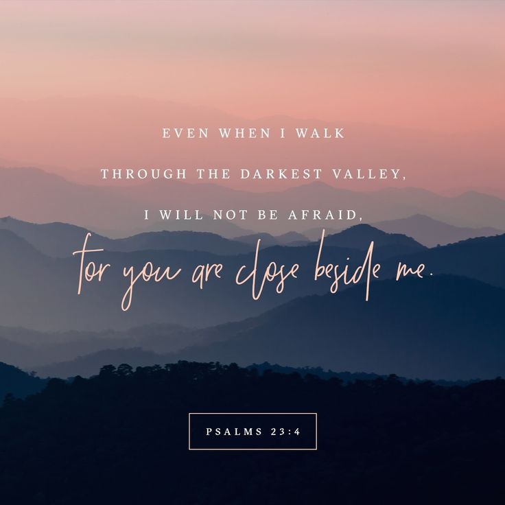 """""""Yea, though I walk through the valley of the shadow of death, I will fear no evil: for thou art with me; thy rod and thy staff they comfort me."""" Psalms 23:4 KJVhttp://bible.com/1/psa.23.4.kjv"""