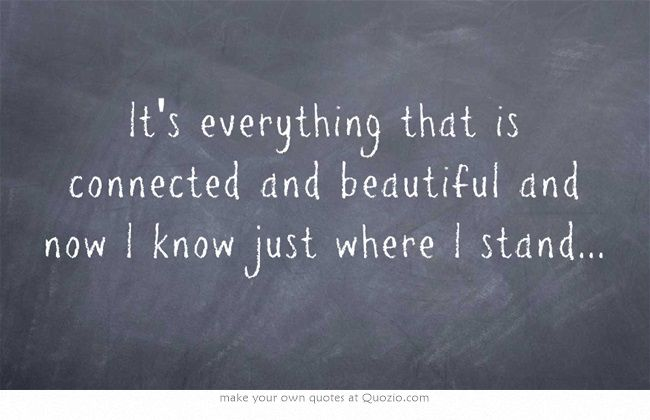 It's everything that is connected and beautiful and now I know just where I stand...Kissing families Silversun pickups