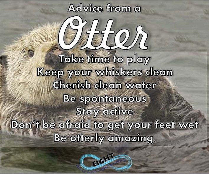 Did you know that otters hold hands when they sleep so that they dont drift apart smile emoticon The animal symbolism of the otter relies a lot on its environment. As an aquatic animal, the otter is a symbol of life. Why? Because the prime symbolic meaning of water deals with the divine feminine, which is a major life-giving energy. :