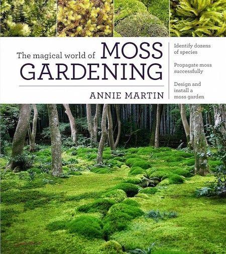 The Magical World of Moss Gardening   Annie Martin   source: Gardenista