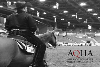 Alumnus Dylan Dombrowski '16 (Willston Park, NY) will represent the Cazenovia College Equestrian team one final time at the 2016 American Quarter Horse Association Collegiate Horsemanship Challenge (AQHA) November 13-14 as part of the Lucas Oil AQHA World Championship Show in Oklahoma City, Oklahoma.