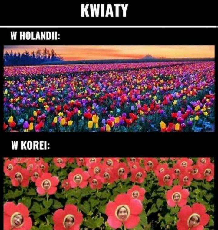 Memy Bts 80 Bts Memes Kpop Memes Bts Funny