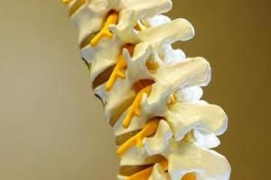 Which Foods Stimulate Bone Fusion After Back Surgery? | LIVESTRONG.COM