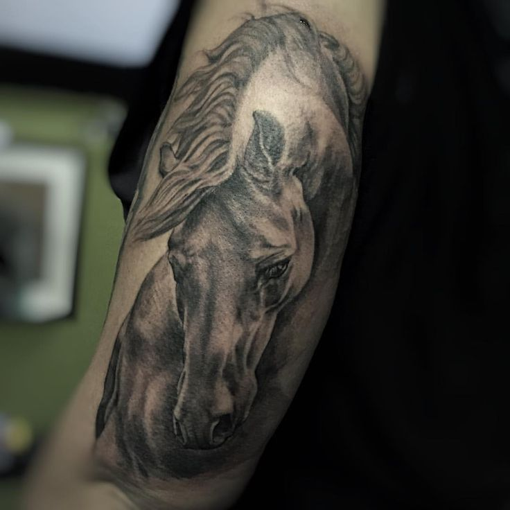 Gorgeous horse tattoo by @claudiarealistictattoo
