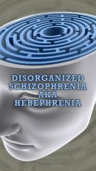 disorganized schizophrenia essays This paper will address a number of topics related to schizophrenia specifically, the writer of the essay would focus on the symptoms, diagnosis, and.