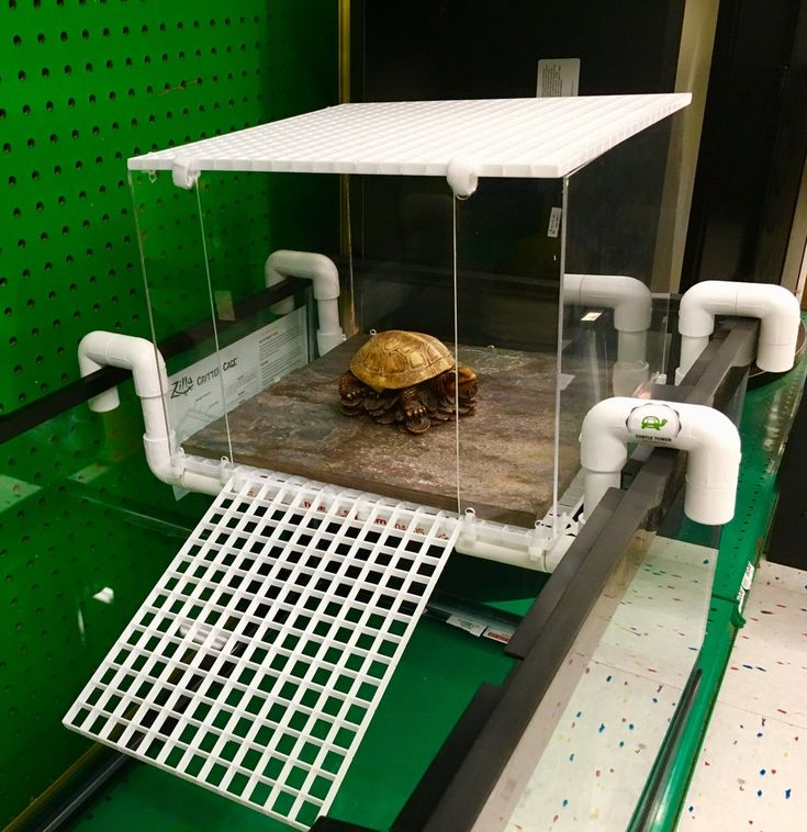 Large Above Tank Acrylic Model (With images) Turtle dock