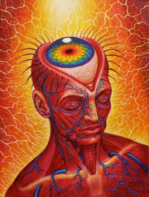 Third eye activation portal / Alex Grey / Anatomical <3