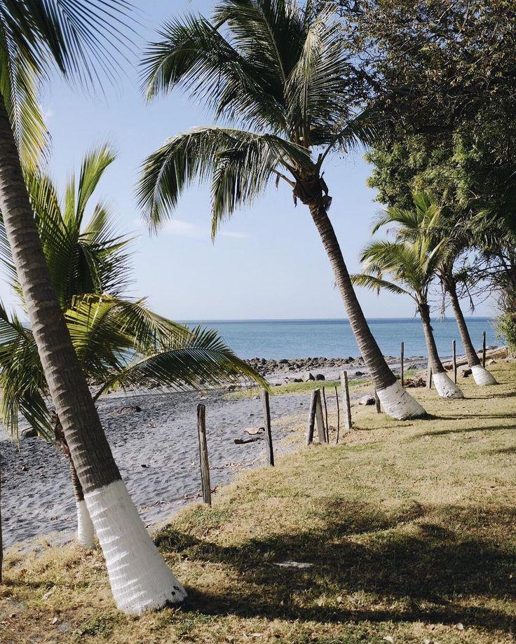 all in a row on playa coronado   @jessicacomingre.