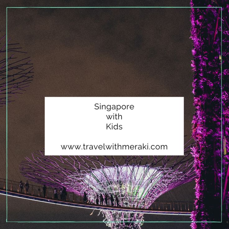 Travel Tips and Inspiration to help your create your perfect family travel adventure to Singapore. Follow for destinations, activities, places to eat, and travel hacks for your trip to Singapore with kids.