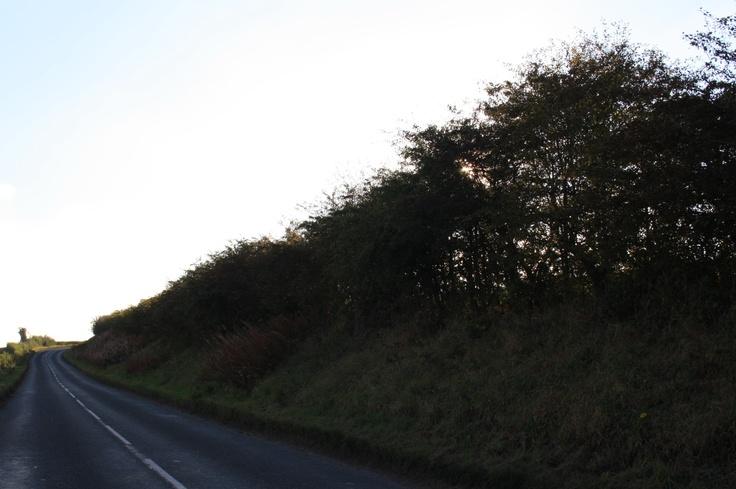 The long & straight-ish road?