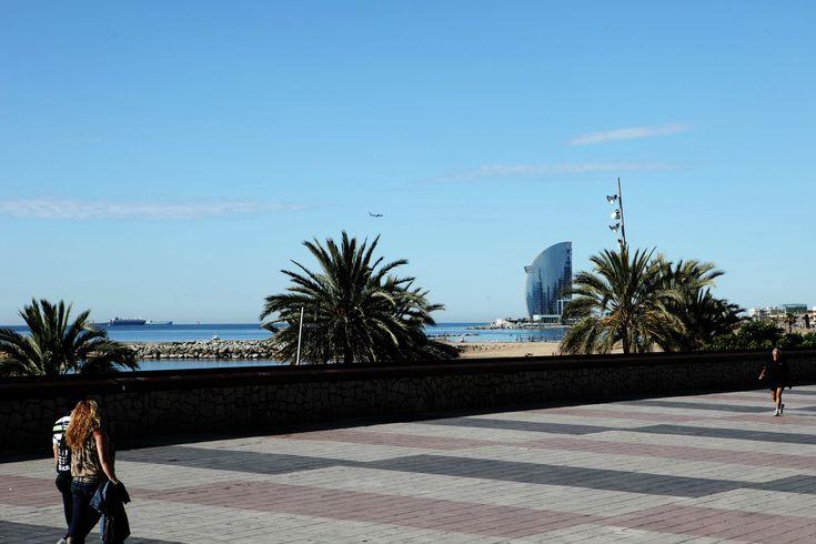 Pavimento Paseo Marítimo Barceloneta Construccion Sector De La Construcción Sellador