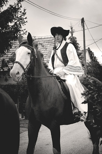 Traditional hungarian horseback rider csikós in the grape harvest parade in Somló, Hungary on September 20th 2008.