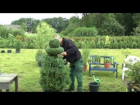 Hmmmm, topiary??? (Great British Garden Revival - Episode 2: Topiary and Roof Gardens - YouTube)