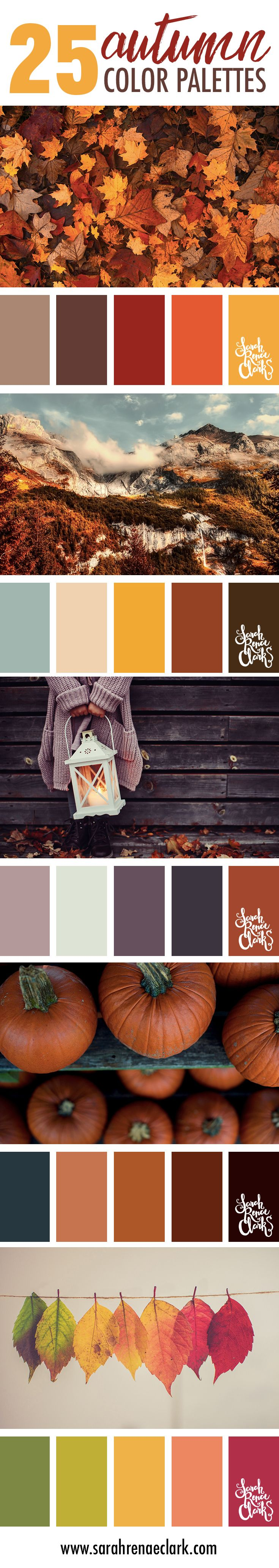 25 Autumn color schemes | Click for more fall color combinations, mood boards and seasonal color palettes at http://sarahrenaeclark.com