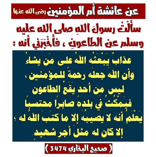 Pin By Foued On Dou3a Ahadith Periodic Table