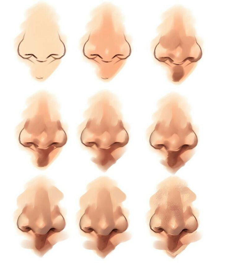 Character Design Noses : Best images about character anatomy nose on pinterest