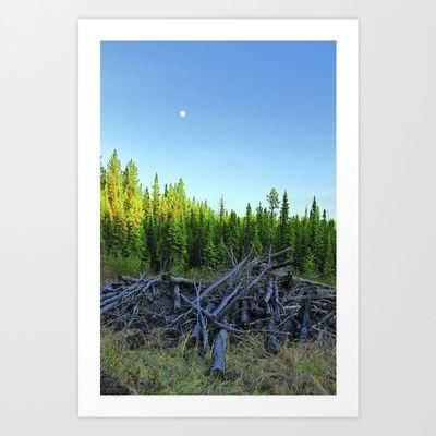 Trees  Art Print by Katrina Berkenbosch  - $13.52