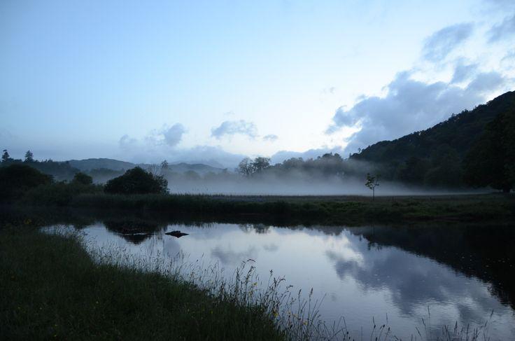 Mist at Borrans Park