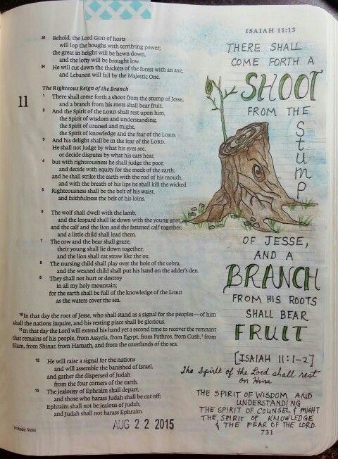 Isaiah 11:1-2 - by Paula-Kay Bourland