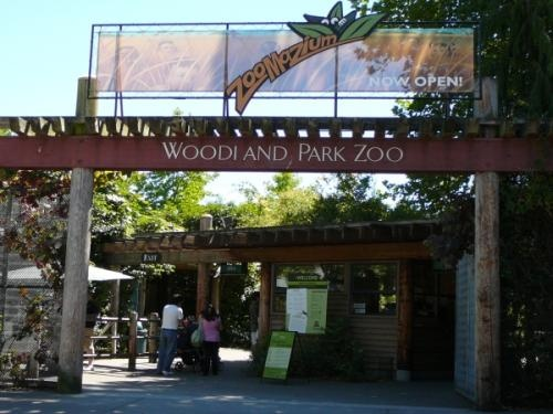 Woodland Park Zoo, I remember going and having a lot of fun! - Google Search