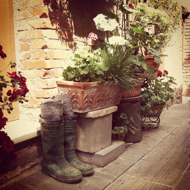 Gurrilla gardening #AlTrasimeno foto di @ paraihc