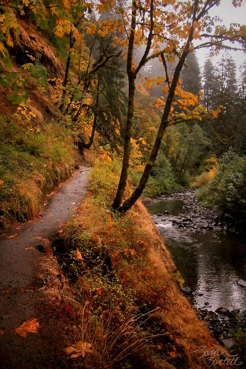 Eagle Creek Trail to Punchbowl Falls, Oregon