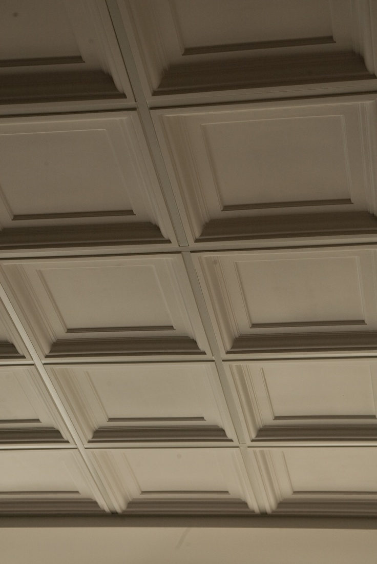 25 Best Ideas About Ceiling Grid On Pinterest Drop