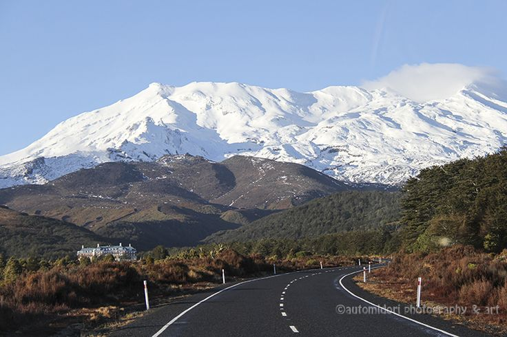 Through my driver's window on the way to Tongariro National Park.
