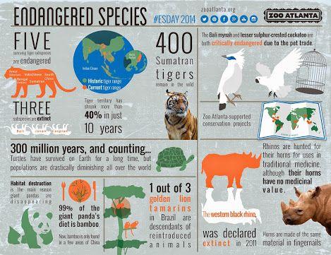 003 endangered species Endangered elephants, Endangered