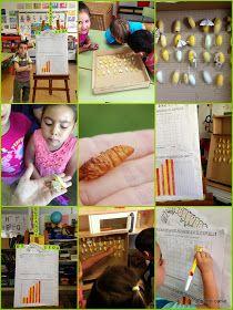 El blog de la Seño Carla: Proyecto Gusanos de Seda IV - Silkworm work project IV
