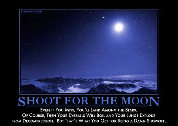 Shoot for the Moon from Despair, Inc.