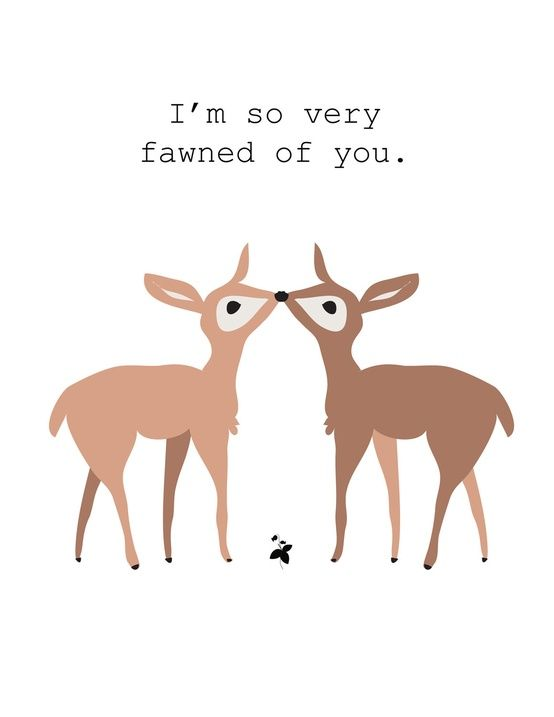 "Should say... ""I'm so very fawned of you, MY DEER!"" What a waste of a good pun ;)"