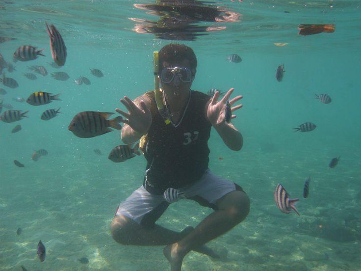 Sony Xperia Z1S - Ook te gebruiken voor onderwaterfoto's!  http://i.imgur.com/EeYWyCa.jpg